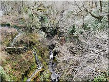 SN7477 : Steps to Mynach Falls at Devil's Bridge by David Dixon