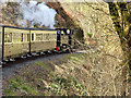SN7377 : Vale of Rheidol Railway near to Devil's Bridge by David Dixon