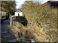 SN7277 : Vale of Rheidol Railway Approaching Rhiwfron Halt by David Dixon
