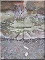 NY4252 : Ordnance Survey Cut Mark by Adrian Dust