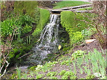 SX9050 : Waterfall, Coleton Fishacre by David Hawgood