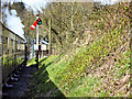 SN6878 : Vale of Rheidol Railway Approaching Aberffrwd by David Dixon