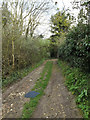 TM1154 : Footpath off The Hollows by Geographer