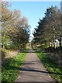 SE6045 : Cycle path near Naburn by DS Pugh