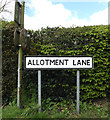 TM1854 : Allotment Lane sign by Adrian Cable