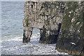 TA1974 : Bempton Cliffs, Yorkshire by Christine Matthews