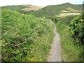 SX7937 : The coast path passing Lannacombe Bay by Philip Halling