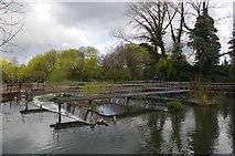 TL3808 : Dobb's Weir by Glyn Baker