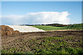 NZ2352 : Field close to Grange Villa by Trevor Littlewood