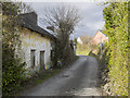 V9791 : Ruined cottage, Killarney by Rossographer