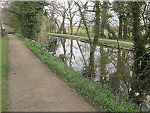 SD4615 : Leeds and Liverpool Canal by Rufford Old Hall by David Hawgood