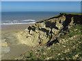 TG2639 : Cliffs at Trimingham by Hugh Venables