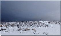 NZ5812 : Newton Moor by Mick Garratt