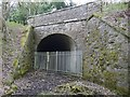 NN8221 : Tunnel portal at Strowan by Brian Westlake