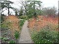 SU3226 : The Winter Garden, Mottisfont Abbey by Humphrey Bolton