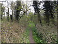TM1252 : Footpath to Sandy Lane by Adrian Cable