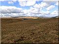SD9967 : Old Pasture by Mick Garratt