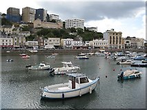 SX9163 : The harbour in Torquay by Philip Halling