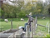 TQ4476 : The scarecrow at Woodlands Farm by Marathon
