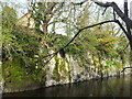 M4136 : River Clare at Lackagh County Galway by Declan Maher