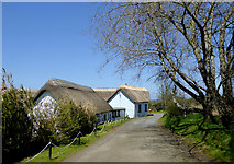SS2317 : Driveway by The Old Smithy in Darracott, Devon by Roger  Kidd