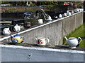 SK8378 : Teapots outside Torksey Lock Tea Room by Mat Fascione