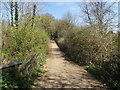 TL1215 : The Nickey Line footpath to Hollybush Lane by Adrian Cable
