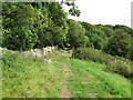 SO8208 : Cotswold Way through the gate-Haresfield, Glos by Martin Richard Phelan