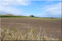 NS2742 : Arable Land at Stevenston by Billy McCrorie