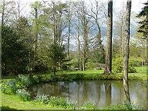 SP1971 : Fish Pond, Baddesley Clinton by Robin Drayton