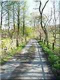 SE0927 : Simm Carr Lane, Northowram by Humphrey Bolton
