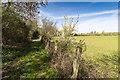 SP1345 : Bridleway to Honeybourne by David P Howard