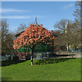 SK5640 : Nottingham Arboretum: new leaf, bandstand and spire by John Sutton