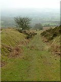 SO5977 : Titterstone Quarry incline by Alan Murray-Rust