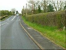 SO5875 : A4117 below Cleehill by Alan Murray-Rust