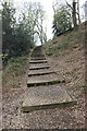 SJ5359 : Steps through the Woodland Park at Beeston Castle by Jeff Buck