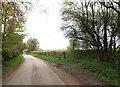 TM1850 : Witnesham Church Lane & footpath by Adrian Cable