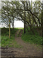 TM1850 : Footpath off Witnesham Church Lane by Adrian Cable