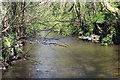 ST1797 : River Sirhowy, below Penmaen by M J Roscoe