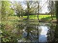 SU6266 : Fish Pond at Ufton Court by Des Blenkinsopp
