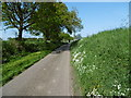 TL8232 : Essex in May by Marathon
