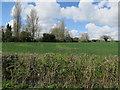 TL9794 : Field near Lower Stow Bedon by Hugh Venables