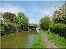SP6165 : Long Buckby, Bridge No 13 by Mike Faherty