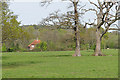 TQ0347 : Fields near Albury Mill by Alan Hunt