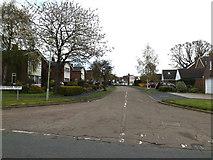 TM1551 : Gascoigne Drive , Henley by Geographer