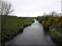 R0262 : The Doonbeg River, looking upstream by David Purchase