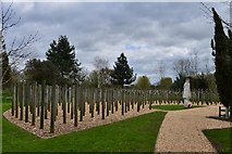 """SK1814 : National Memorial Arboretum: """"Shot at Dawn"""" 1 by Michael Garlick"""