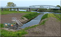 SK8174 : Drainage channel joining the River Trent by Mat Fascione