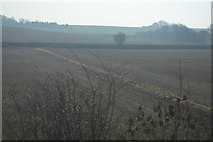 TR0650 : Farmland, Godmersham by N Chadwick