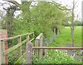 SO8141 : Footbridge at start of path from Gilvers Lane to Hook Bank by David Smith